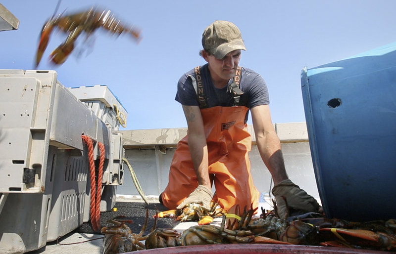 ... when he's not out lobster fishing off Blue Hill. More than 7 percent of Mainers hold multiple jobs.
