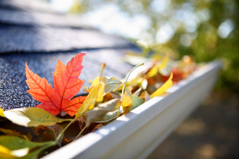 Clogged gutters can lead to ice dams, moisture problems, leaks and slippery walkways in winter. To avoid these issues, clean them out before the snow flies – or hire someone else to do it.