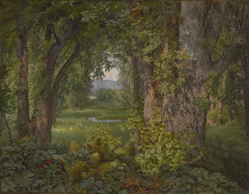"""In the Woods,"" 1860 oil on canvas by William Trost Richards (American, 1833-1905), from ""We Never See Anything Clearly: John Ruskin and Landscape Painting,"" through Dec. 23 at the Bowdoin College Museum of Art."