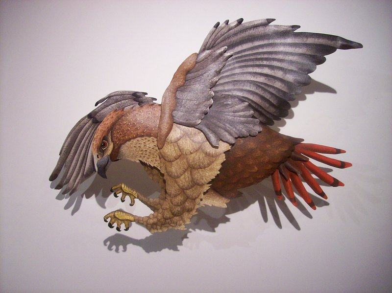 """Red Tailed Hawk"" by Hugh Verrier."