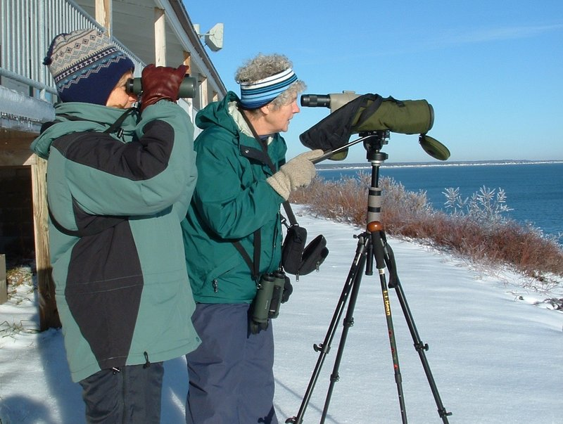Joanne Stevens, left, and Marie Jordan take part in a past York County Christmas Bird Count at the Cliff House in Ogunquit.