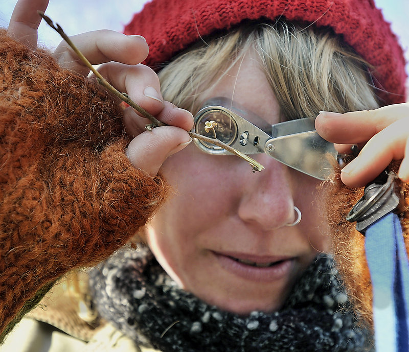 Sarah Wineberg, a winter intern from the College of the Atlantic, gets a close-up view of a twig during a hike at the Hidden Valley Nature Center.