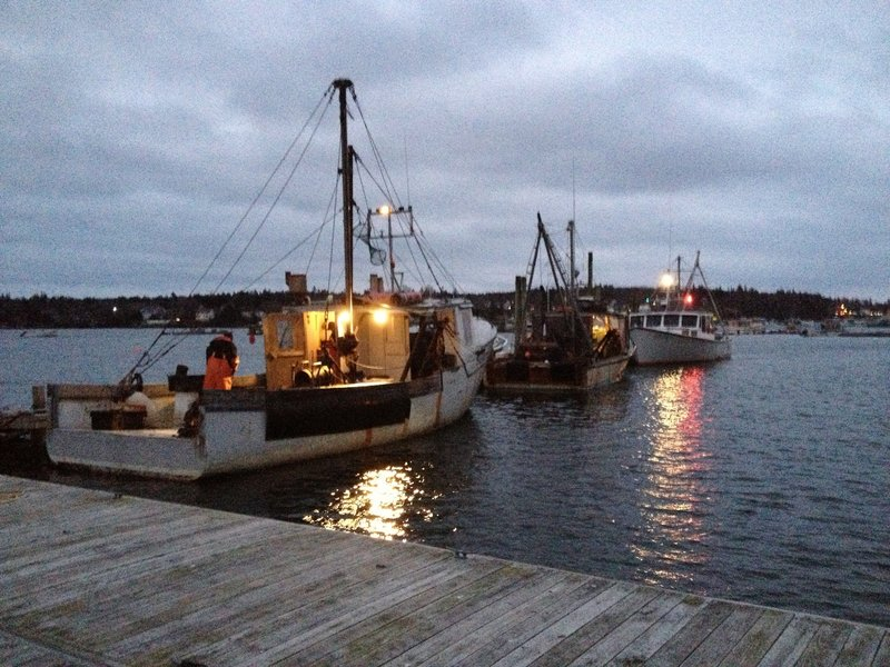The fishing boats Bossy Lady (foreground), the First Edition and the DDT II prepare their catches of scallops harvested from the waters off Blue Hill.