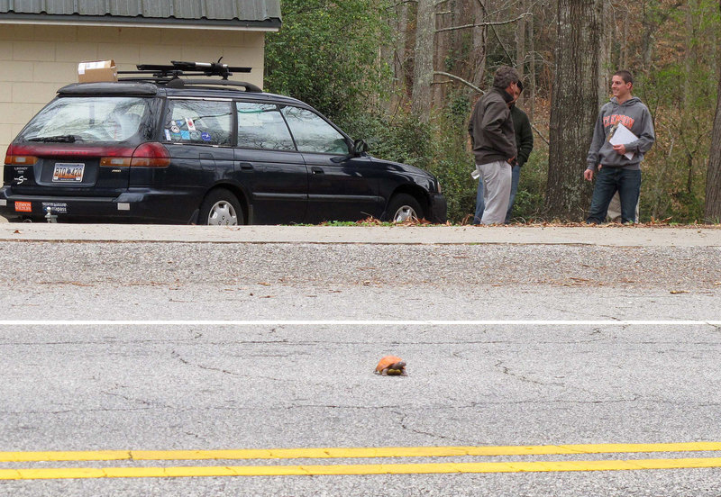 Clemson University student Nathan Weaver, right, talks with his professor, Rob Baldwin, left, as they monitor the fake turtle Weaver placed on a Clemson, S.C., road. Weaver is tracking how many drivers intentionally run over the turtle.