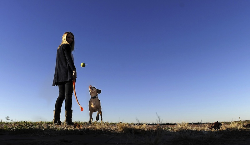 Kelsey Munroe of Portland throws the ball to Stella, her 5-year-old Viszla mix, Wednesday morning October 24, 2012, near the North Street Community Garden on the Eastern Promenade. Women's Health Magazine has named Portland, Maine, one of the healthiest cities in the United States for a woman to live.