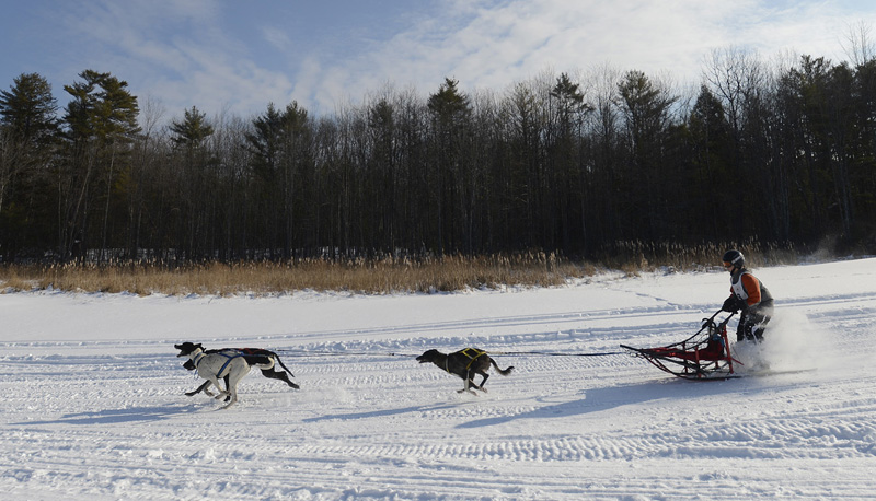 Ethan Daigneault of Waterboro competes in the three-dog junior class at Sunset Ridge Golf Course on Sunday. Organizers included sled dog racing in Westbrook's first Winter West Festival to give it regional appeal, and the competition drew 45 teams from around New England.