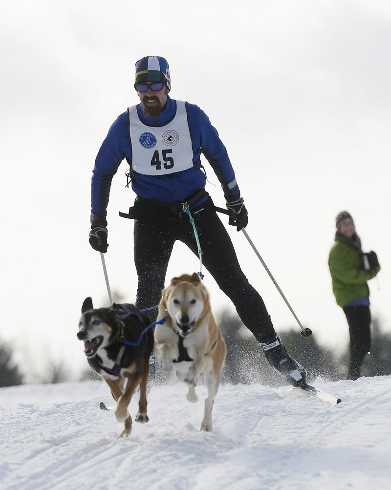 Steven Endres of Bradford, N.H., and two dogs race in the New England Sled Dog Club's season opening event in Westbrook. Members of the club said there was pent-up demand for sled dog racing because last winter lacked snow.