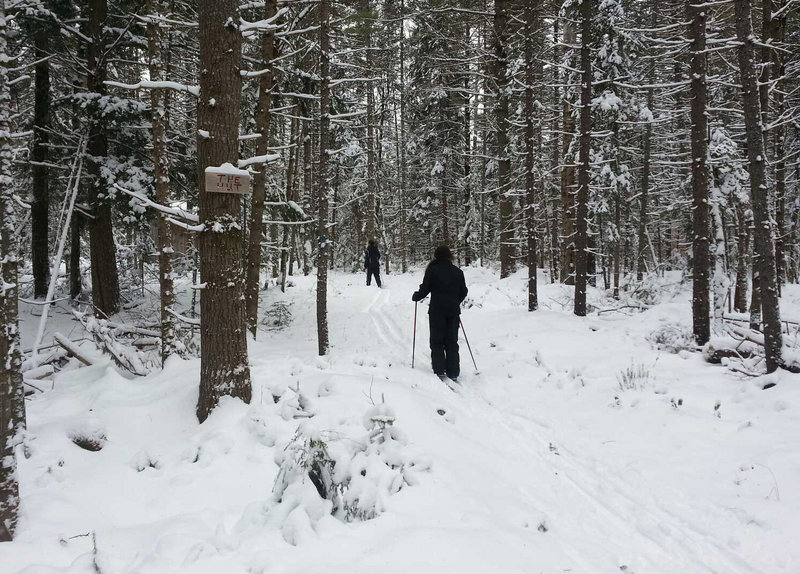 The trails at Carter's in Oxford are well-marked with wooden signs, but it was just as easily to simply follow the grooming. Carter's has 40 kilometers of trails.