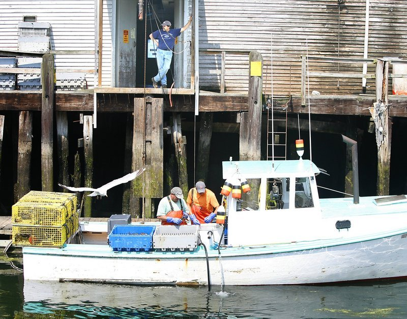 Lobstermen Peter Pray, left, and son Eric sort lobsters on Lady Catherine while docked at Harbor Fish Market in Portland last summer. The Maine Food Strategy will include plans to help commercial fishermen and sea vegetable harvesters.