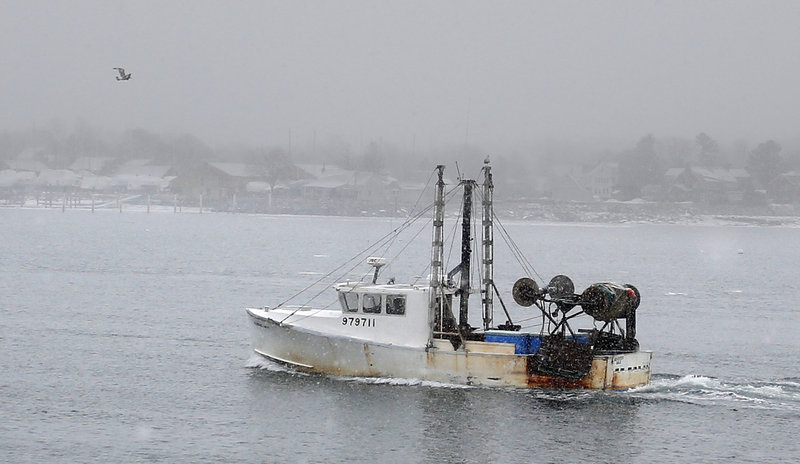 A groundfishing boat heads toward shore Monday near the Portland Fish Pier. Tighter restrictions may force fishermen to shift to healthier species with larger catch limits.