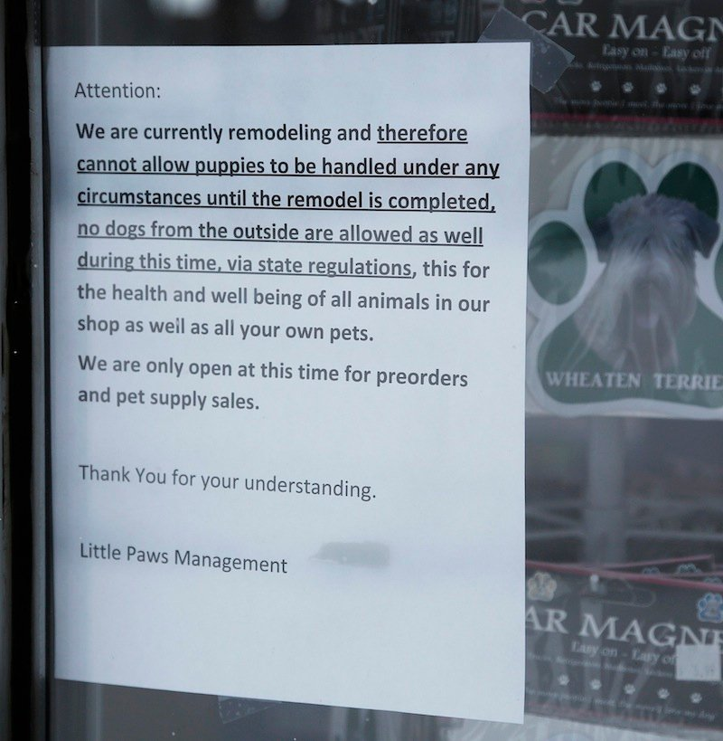 The state has put Little Paws Pet Shop in Scarborough under quarantine because a puppy sold there died after testing positive for parvovirus and giardia. Above, a sign on the store's front window on Friday, Feb. 8, 2013.