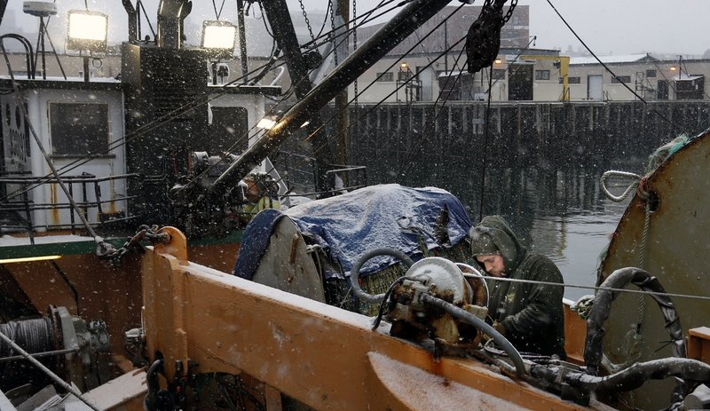 Alex Young of Atlantic Trawling works on Harmony, a groundfishing boat, at the Portland Fish Pier last month. Elected officials, researchers and regulators must be held accountable for their role in management decisions that affect the fishery, a reader says.
