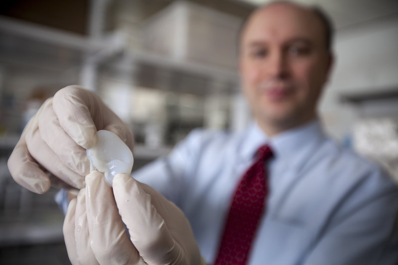 Cornell engineer Lawrence Bonassar holds the scaffolding for an ear his laboratory is creating using a 3-D printer and cells that produce cartilage.