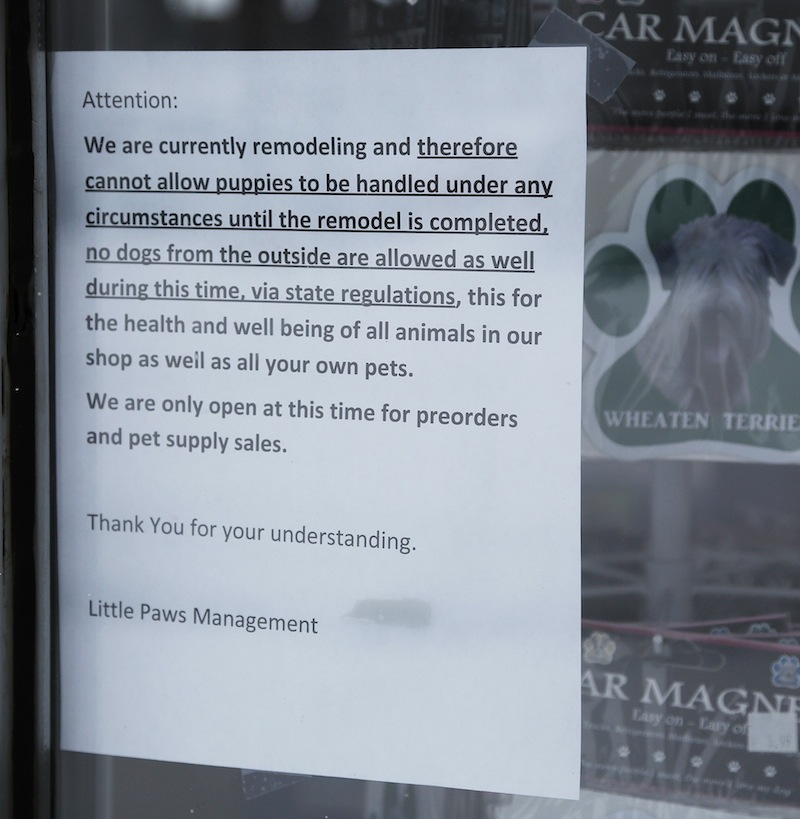 The state put Little Paws Pet Shop in Scarborough under quarantine because a puppy sold there died after testing positive for parvovirus and giardia. Above, a sign on the store's front window on Friday, Feb. 8, 2013.