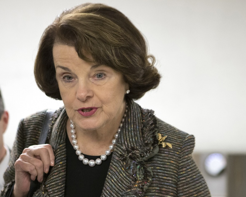 In this Feb. 25, 2013 file photo, Sen. Dianne Feinstein, D-Calif. speaks with reporters on Capitol Hill in Washington. Feinstein, the sponsor of a proposed assault weapons ban says Senate Majority Leader Harry Reid has told her that the ban will not be part of the initial gun control measure the Senate will debate next month. (AP Photo/J. Scott Applewhite)