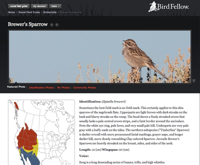 These screen shots show the new online resource for bird-watchers called BirdFellow. Users can access high-quality images and recordings of birds, plus many other features.