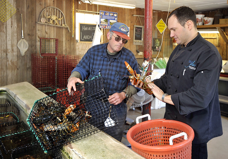 Mitchell Kaldrovich, right, chef at the Sea Glass Restaurant at Inn by the Sea in Cape Elizabeth, picks out his allotment of lobsters from Jodie Jordan, owner with his wife Patricia of Alewive's Brook Farm, also in Cape Elizabeth. Kaldrovich was an early supporter of the Sustainable Seafood Culinary Partners effort.