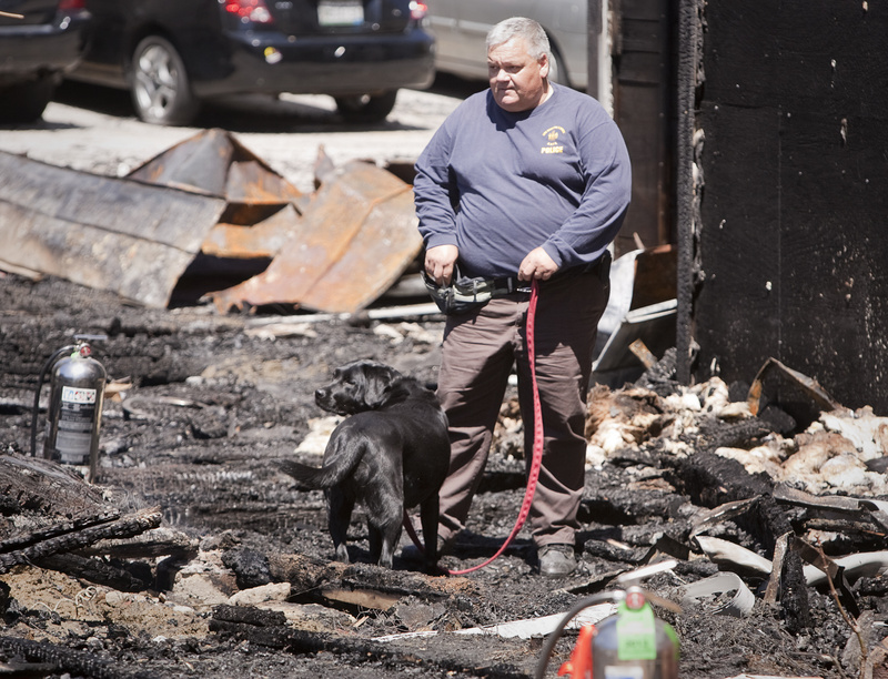 A fire investigator uses a dog to help find clues to a fire on Bartlett and Pierce Streets in Lewiston on Saturday morning.
