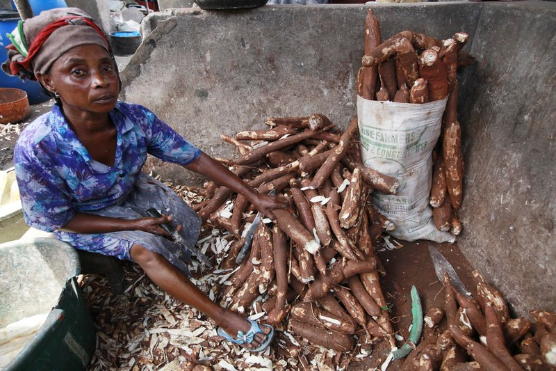 A woman peels cassava to make cassava flour last week in a market in Lagos, Nigeria. The potato-like root helps feed 500 million Africans.