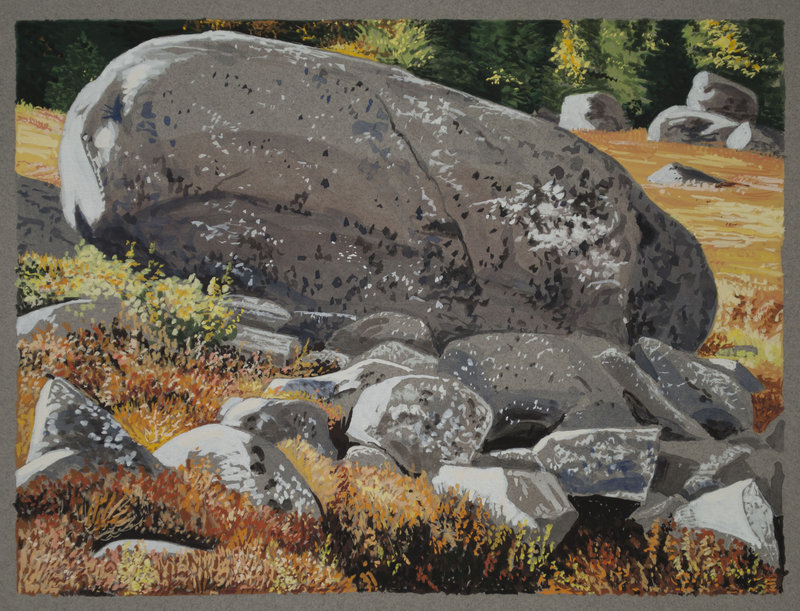 """Big Erratic with Lichen, Brooksville"" by John Woolsey"