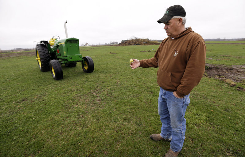 Farmer Clark Kelly holds a golf ball he dug out of a fairway on the Hend-Co-Hills Golf Course, near Biggsville, Ill. Kelly purchased the course with plans to plow it into farmland.