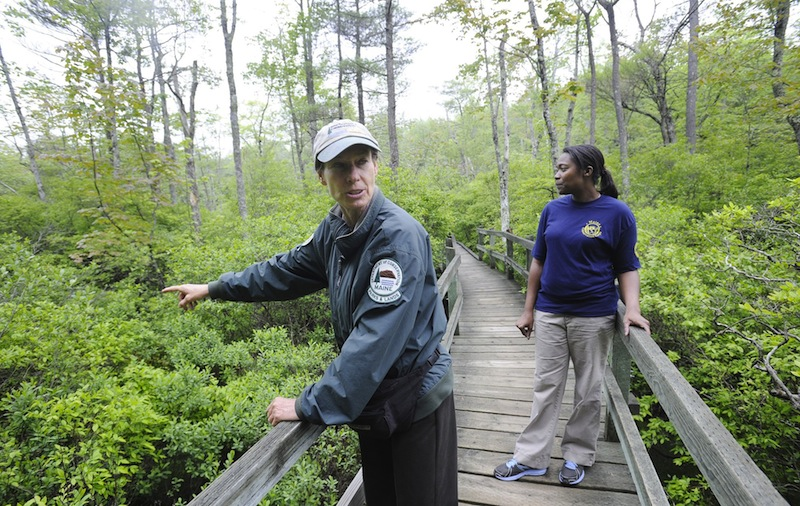 In this May 2012 file photo, Ferry Beach State Park Ranger Janet Mangion points out growth in Tupelo Swamp while walking down the boardwalk on Tupelo Trail. Maine officials are encouraging Mainers to explore the outdoors by offering free admission at state parks and historic sites on Father's Day.
