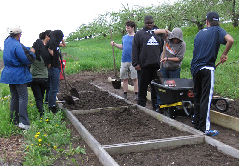 New York City students try gardening during a recent visit to the Sabbathday Lake Shaker Village in New Gloucester. The students lodged at the village and participated in prayers and chores on the farm. They also took field trips to other attractions in the area.