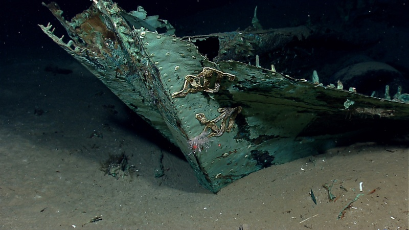 The oxidized copper hull sheathing and possible draft marks are visible on the bow of a wrecked ship in the Gulf of Mexico about 170 miles from Galveston, Texas.