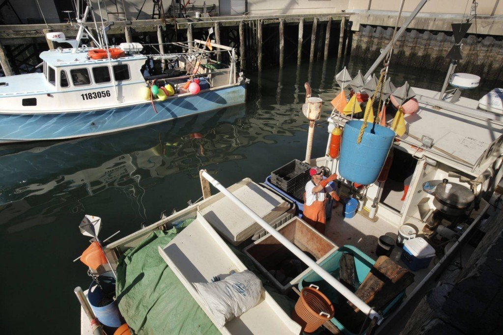 A fisherman offloads pollock, hake and cod from the Gretchen Marie at the Portland Fish Pier. To help New England fishermen compensate for reduced catch limits for groundfish, federal regulators have proposed reopening some fishing areas.