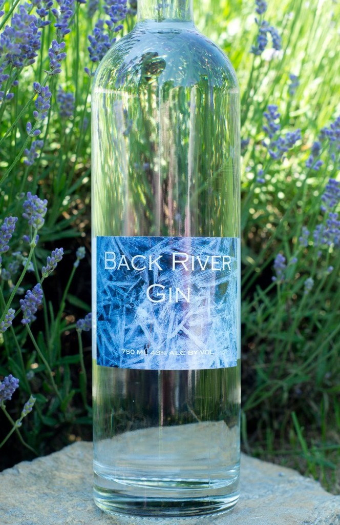 Back River gin, made by Sweetgrass Farm Winery & Distillery in Union.