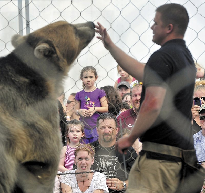 Dexter Osborn puts on a show with Tonk, his 600-pound Alaskan grizzly bear, at the Skowhegan State Fair on Sunday.