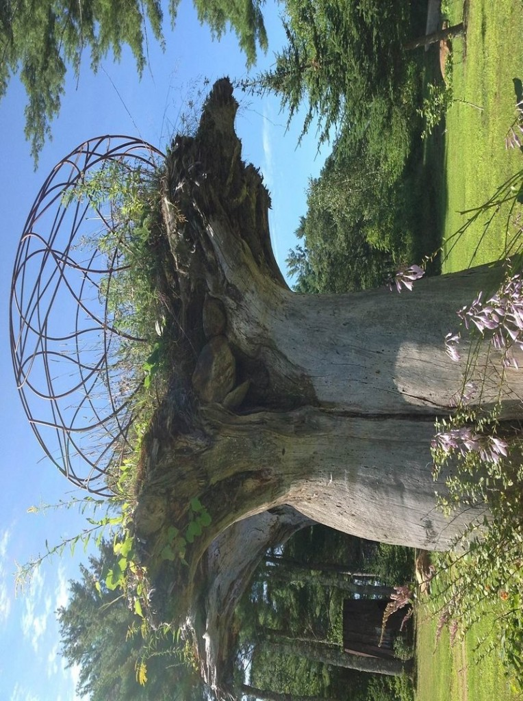 "Jay Sawyer has dotted his property in Warren with the sculptures that he creates from salvaged materials, including ""Keebler Tree."""