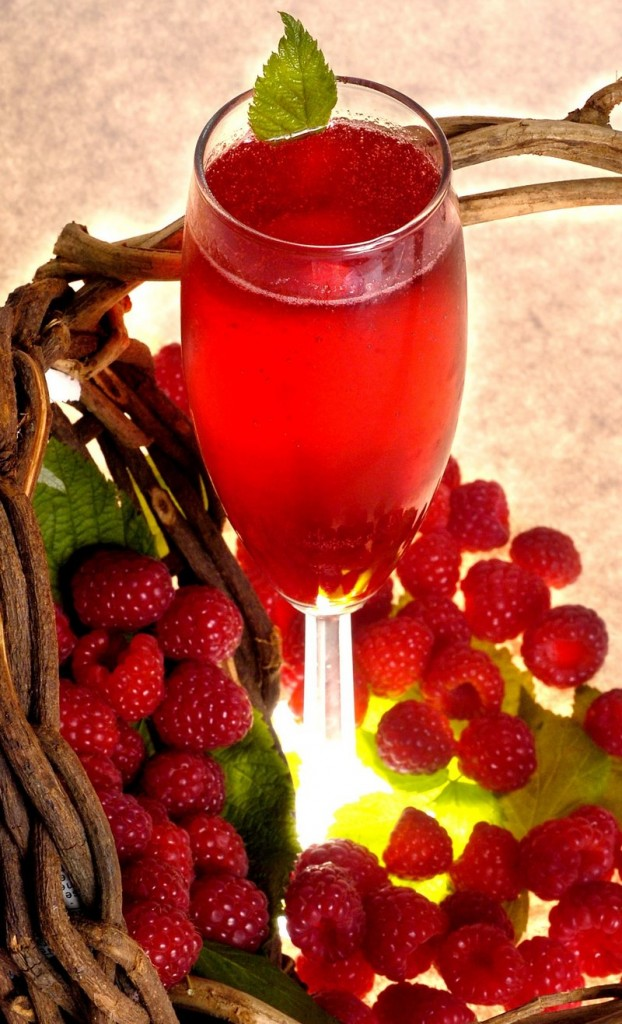 The raspberry shrub handed down by the grandmother of legendary Maine politician Margart Chase Smith.