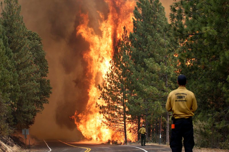 The Rim Fire burns along Highway 120 near Yosemite National Park, Calif., on Sunday. With winds gusting to 50 mph on Sierra mountain ridges and flames jumping from treetop to treetop, conditions are extremely challenging for firefighters.
