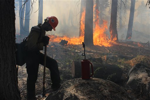 In this photo provided by the U.S. Forest Service, a Hotshot fire crew member rests near a controlled burn operation, as crews continue to fight the Rim Fire near Yosemite National Park in California on Wednesday. The fire's southeast flank in Yosemite is expected to remain active where unburned fuels remain between containment lines and the fire.