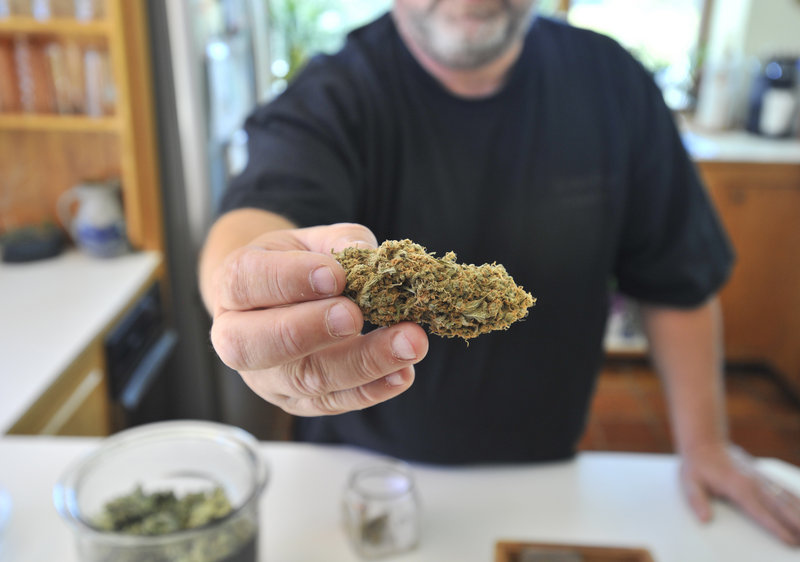 A York County caregiver named Frank displays buds from plants grown for use as medical marijuana. Caregivers also make brownies, chocolates and other pot products for patients.