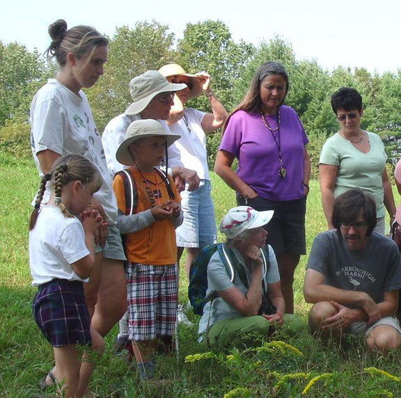 A group studies species of goldenrod during a Skyline Farm Nature Walk. The next nature walk takes place at 1 p.m. Sunday at the farm in North Yarmouth.