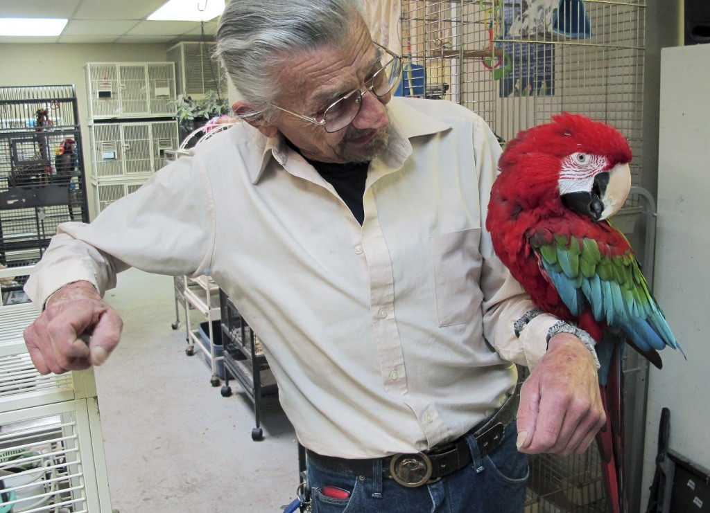 Steve Lazicki holds Santina, a 14-year-old macaw, at Lazicki's Bird House and Rescue in South Kingstown, R.I. The commercial building is slated for demolition and he and the 80 avian strays in his care must be out by Dec. 30.