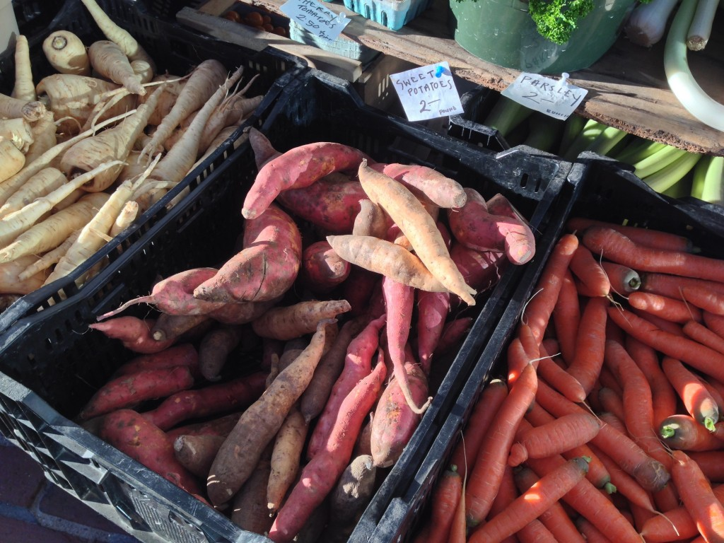 Maine-grown sweet potatoes at the farmers market.