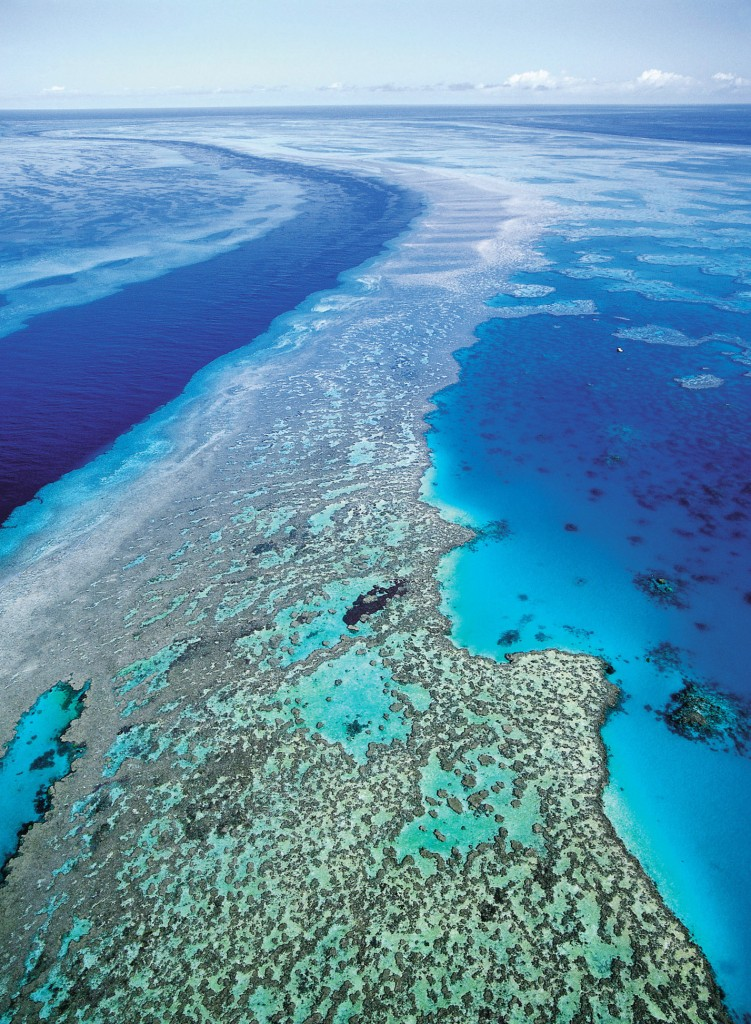 Australia's Great Barrier Reef, above, is threatened by climate change.
