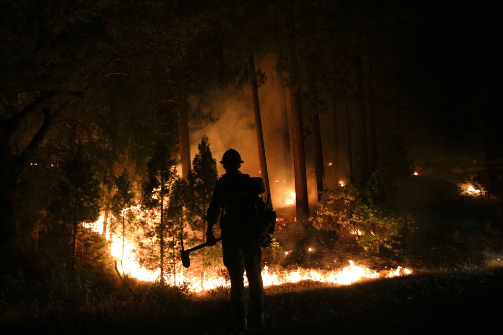 Firefighter John Curtis, of Big Bear, Calif., watches the Rim Fire burn last August near Yosemite National Park, Calif.