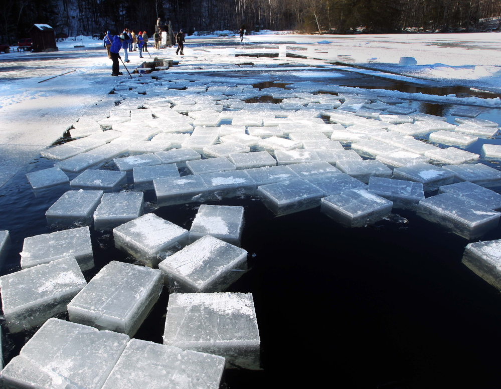 Blocks of ice float in Squaw Cove in Sandwich, N.H. on Thursday. They are ready to be harvested and put into the icehouse at Rockywold-Deephaven Camp.