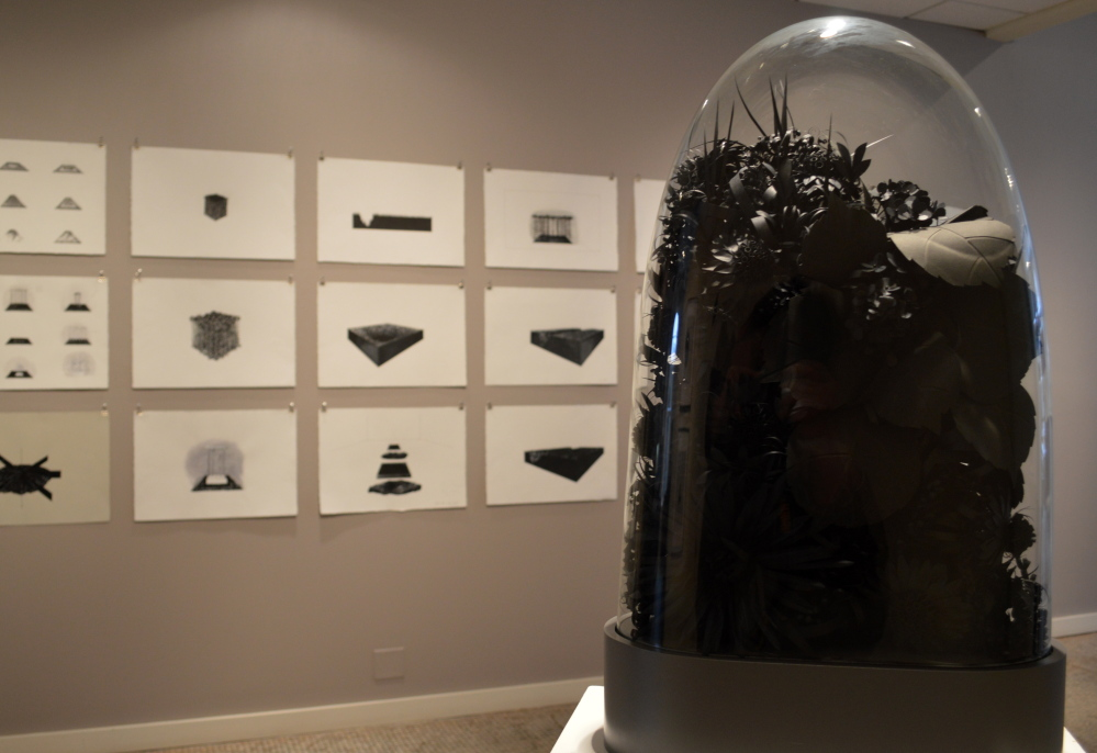 Drawings by Lauren Fensterstock and, under glass, her black paper blossoms