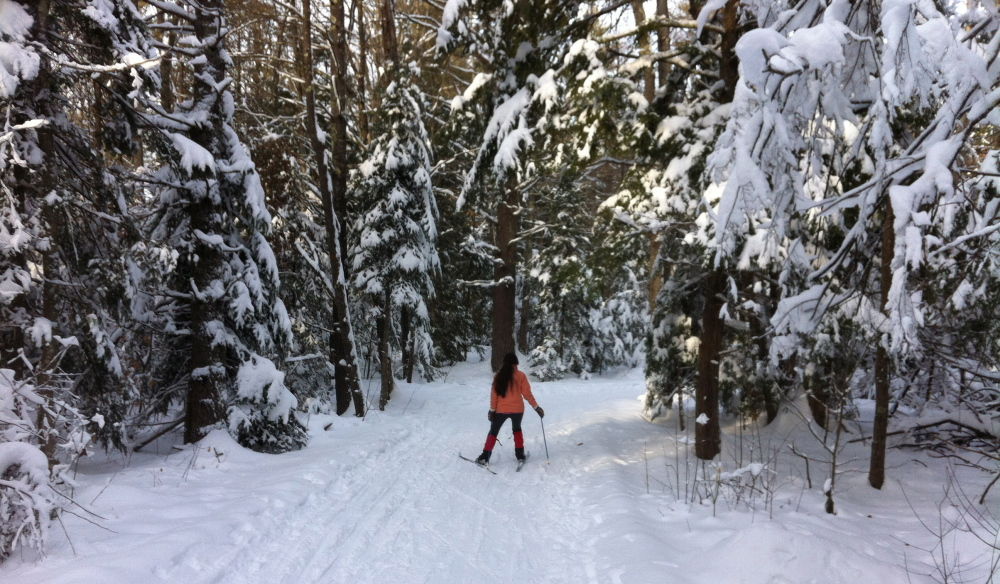 The Inner Loop Trail at Twin Brook Recreation Area in Cumberland is a mostly flat 0.4-mile loop through the woods, and part of a system of about 10 kilometers of groomed trails.