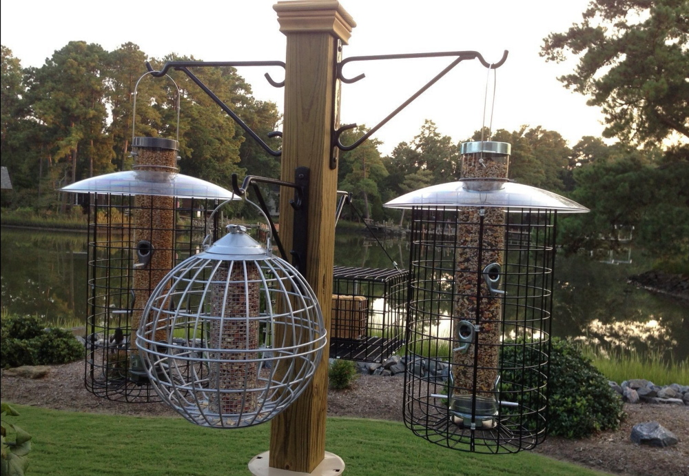 Feeders for suet, peanuts and assorted seeds hang on a feeding station made from a 4-by-4 post and hooks.