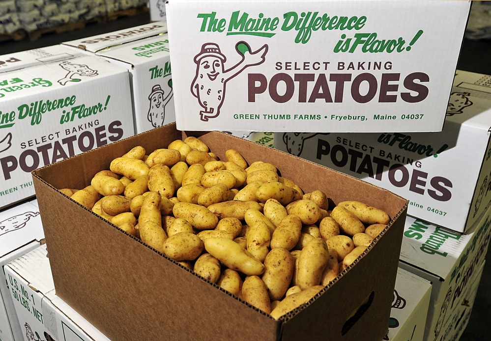 Fingerling potatoes are boxed and prepared for shipping at Green Thumb Farms.