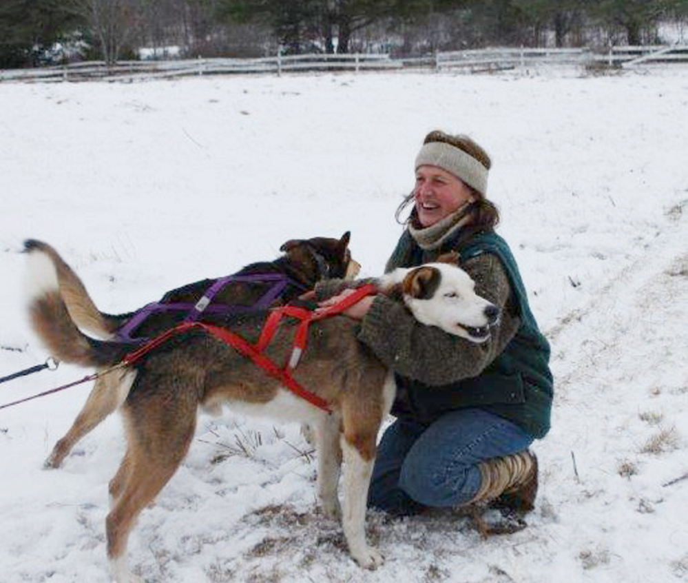 Like a coach, Lindy Howe, co-owner of Augusta's newest dog sled kennel, gives a couple of her pups a pep talk before they commence with pulling Boy Scouts on a memorable adventure through a snowy trail in Central Maine.