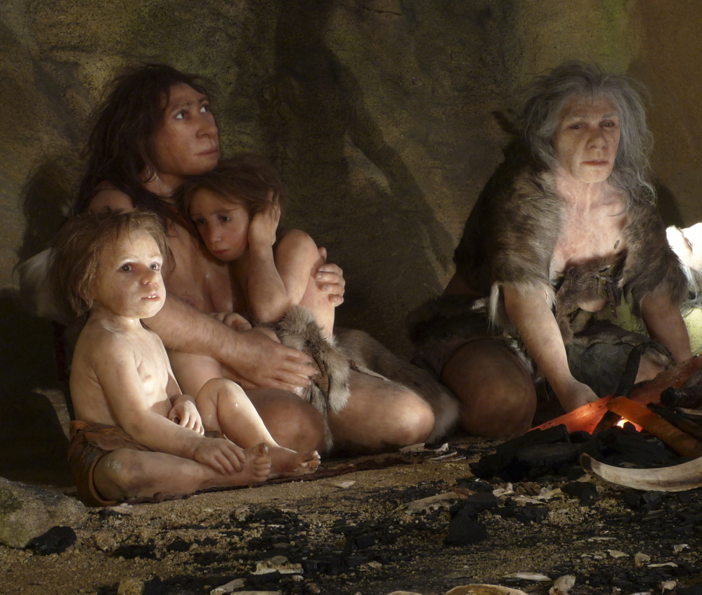 A museum exhibit shows a Neanderthal family. Two studies have arrived independently at the same conclusion: that many of today's humans carry caveman DNA.