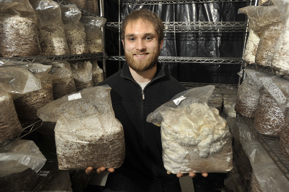 Devin Stehlin holds containers of incubating shiitake and lion's mane mushrooms at Bountiful Mushrooms Farm.