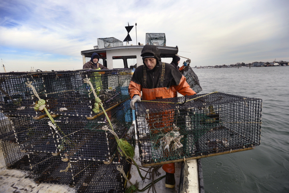 James Rozakis places a lobster trap at the back of the boat Nomad while checking traps in Portland Harbor on Friday.